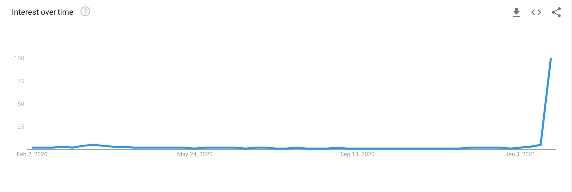 WallStreetBets in Google Trends